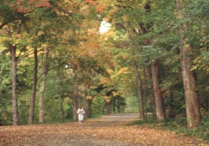 A runner (not me) in Mount Royal park in another season. Bliss.